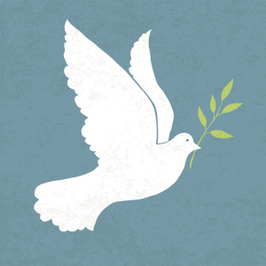 Dove_with_olive